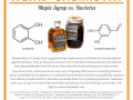 Weird Chemistry #14 - Maple Syrup vs. Bacteria.png