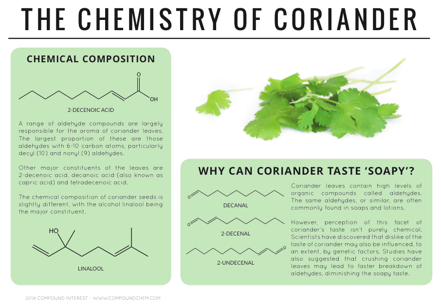 The Chemistry of Coriander Infographic by CompoundChem.com