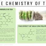 Polyphenols & Antioxidants – The Chemistry of Tea