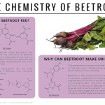 Why Can Beetroot Turn Urine Red? – The Chemistry of Beetroot