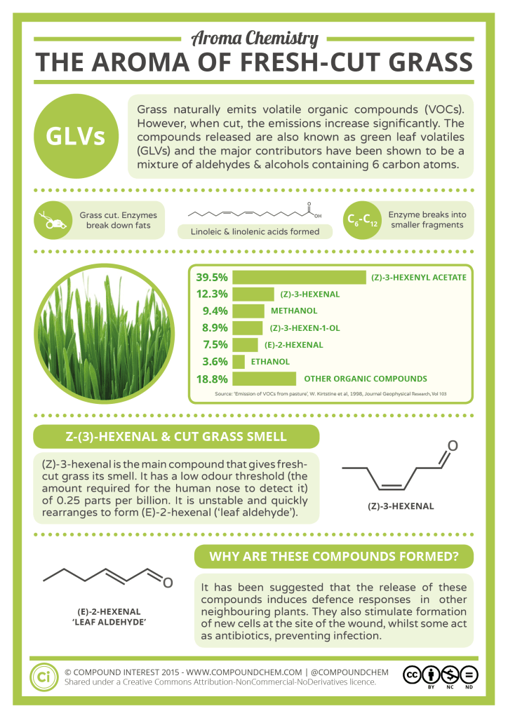 Aroma Chemistry - The Smell of Fresh Cut Grass