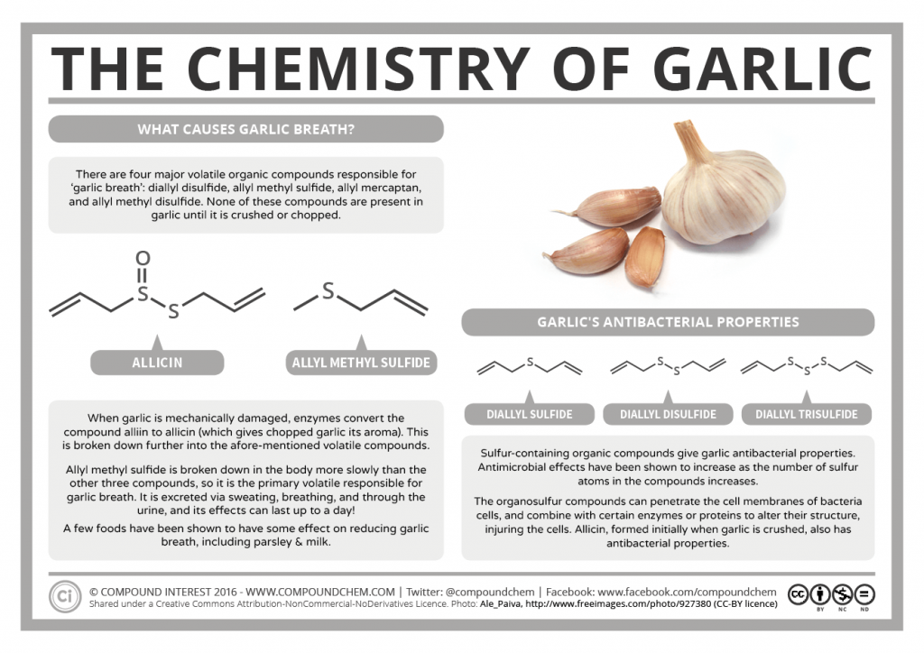 The Chemistry of Garlic 2016