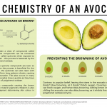 Why Do Avocados Turn Brown? – The Chemistry of Avocados