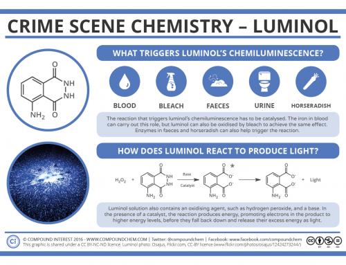 Crime Scene Chemistry – Luminol, Blood & Horseradish