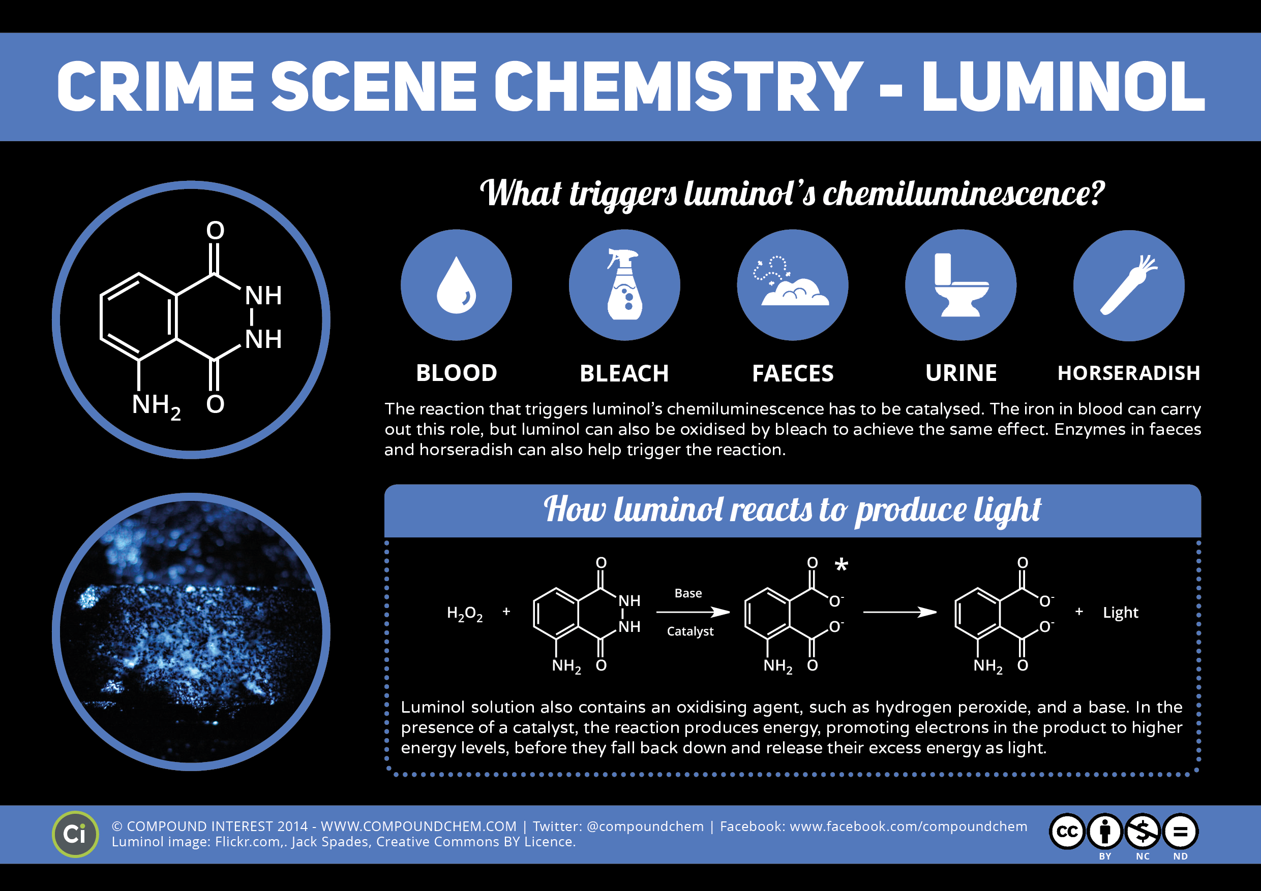 luminol a chemiluminescent compound Introduction purpose: demonstrate how a chemical process can lead to a photochemical outcome through the synthesis of a chemiluminescent substance, luminol other examples of chemiluminescent compounds: luciferacse (produces light in fireflies) cyalume® (used in glow sticks.