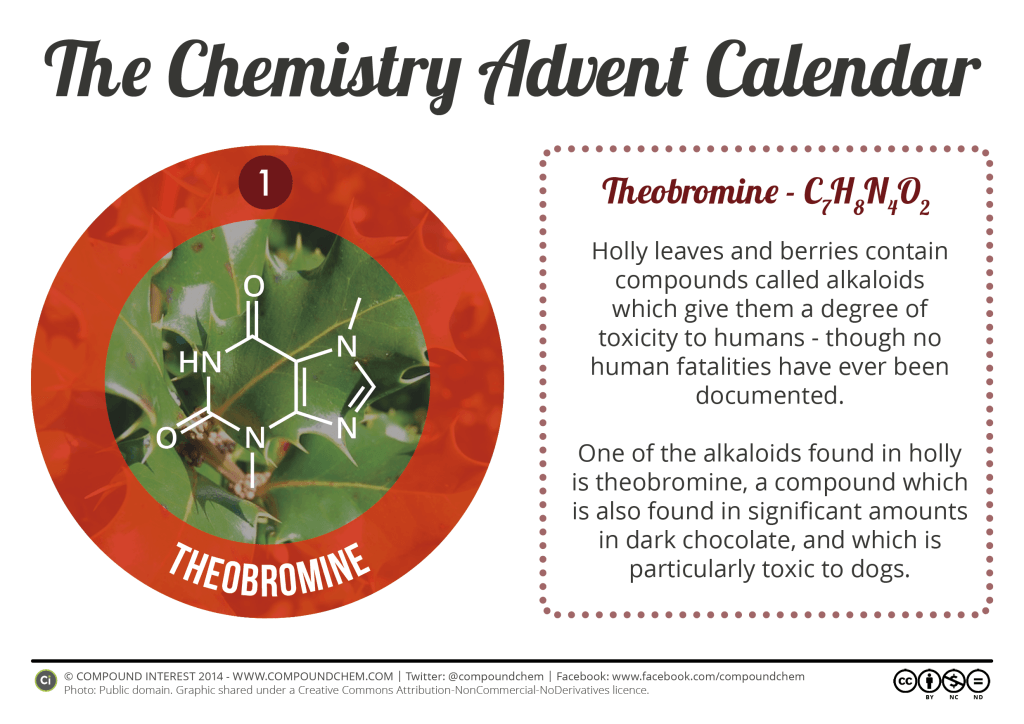 1 - Theobromine & Holly