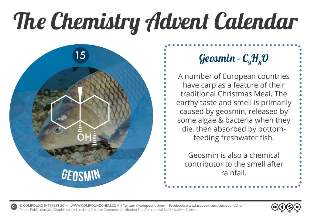 15 - Geosmin & Carp