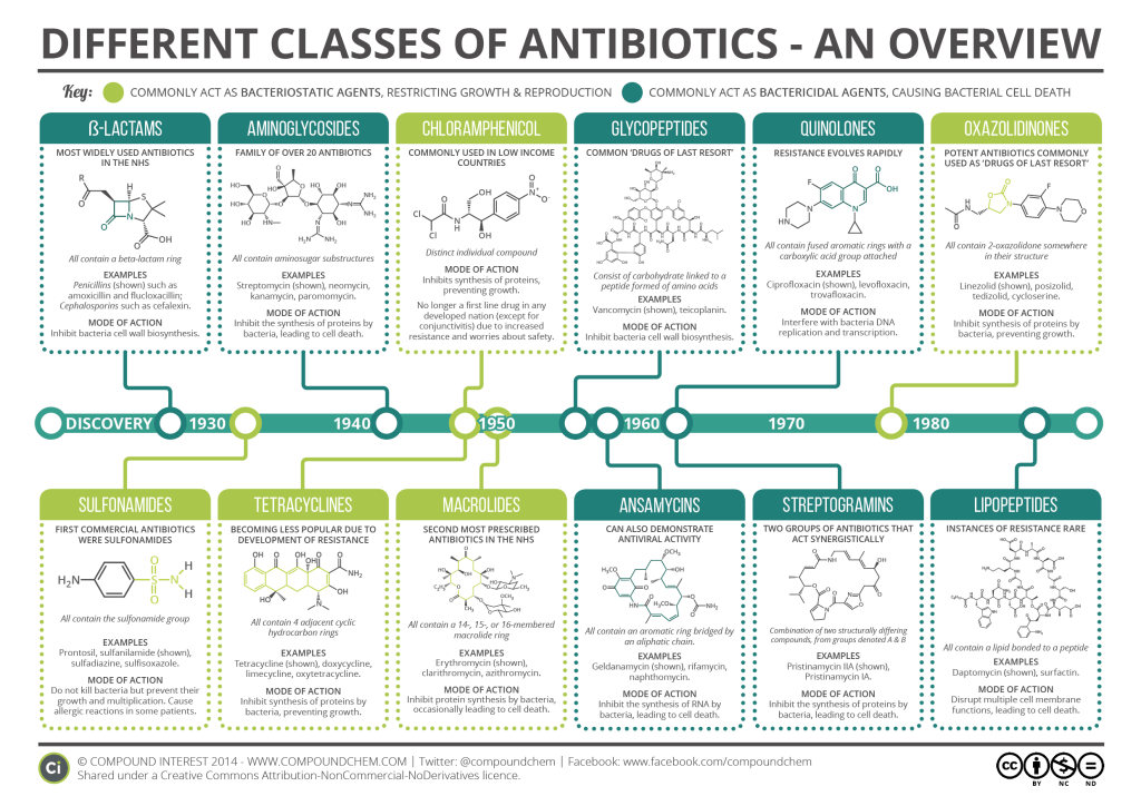 Main Classes of Antibiotics Summary