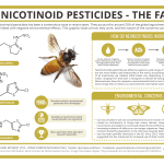 Neonicotinoid Pesticides & Their Effect on Bee Colonies - The Facts