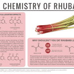 Why Shouldn't You Eat Rhubarb Leaves? – The Chemistry of Rhubarb