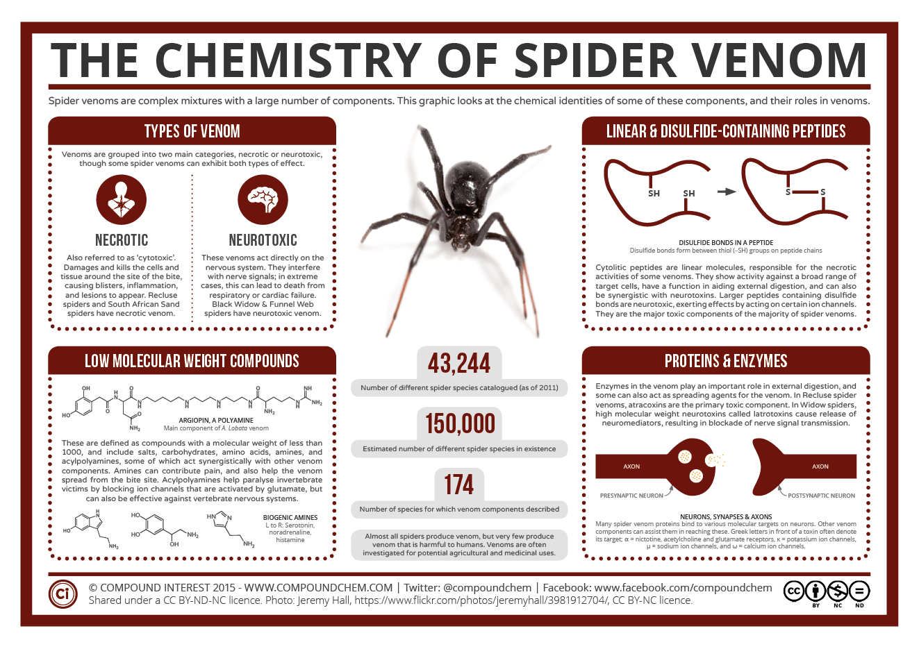 The Chemistry Of Spider Venom Compound Interest
