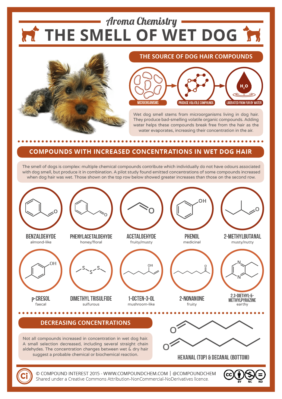 Aroma Chemistry - The Smell of Wet Dog