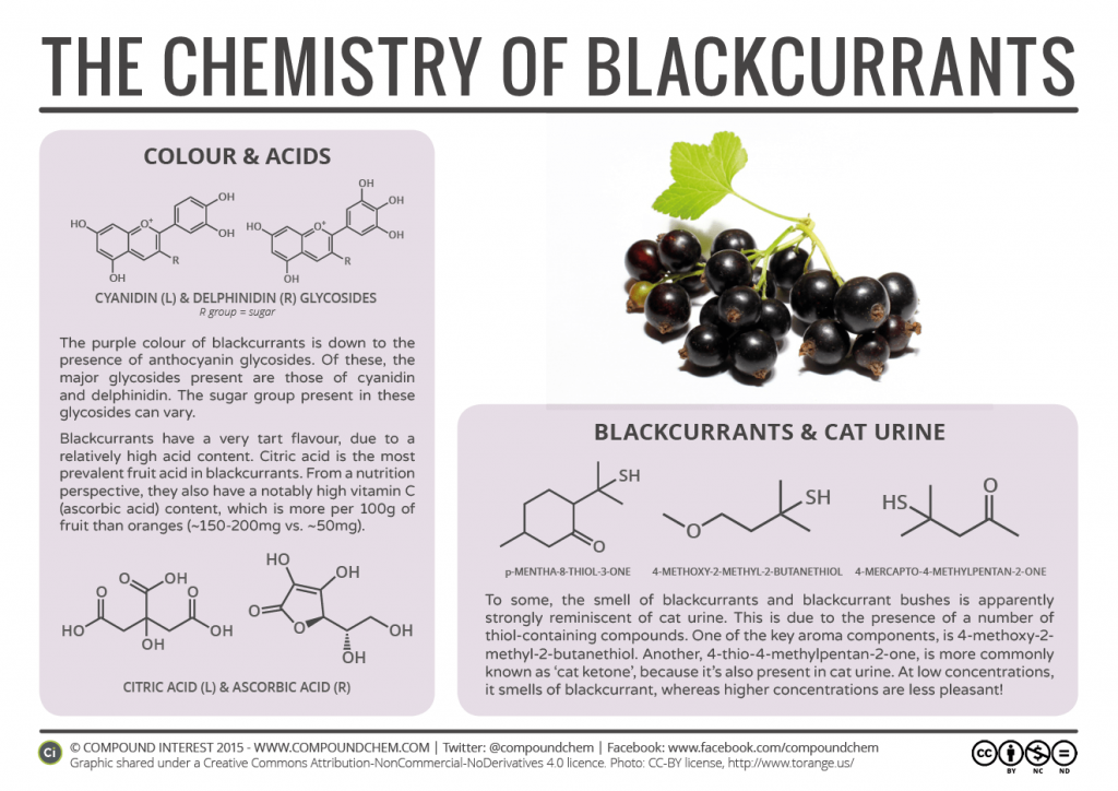 blackcurrant chemistry infographic