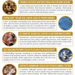 This Week in Chemistry – A Solar Foil, & Greener Barbecue Lighter Fluid