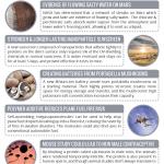 This Week in Chemistry – Water on Mars, & Batteries from Mushrooms