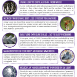 This Week in Chemistry – Molecular 'Nanosubmarines', & Animal Navigation Proteins