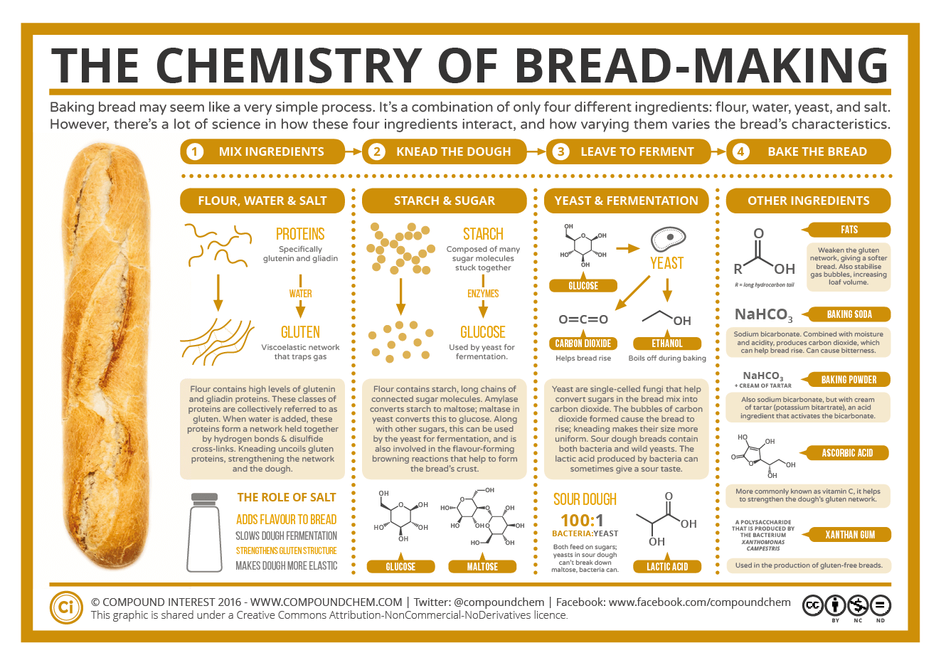 an introduction to the number of factors that affect how quickly bread dough rises Yeast bread primer yeast bread primer making a loaf of bread—turning a sticky, lumpy mess into a loaf of real bread—feels different from buying a loaf that.