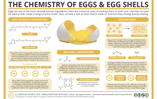 The Chemistry of Eggs & Eggshells