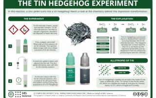 Tin Hedgehog Experiment