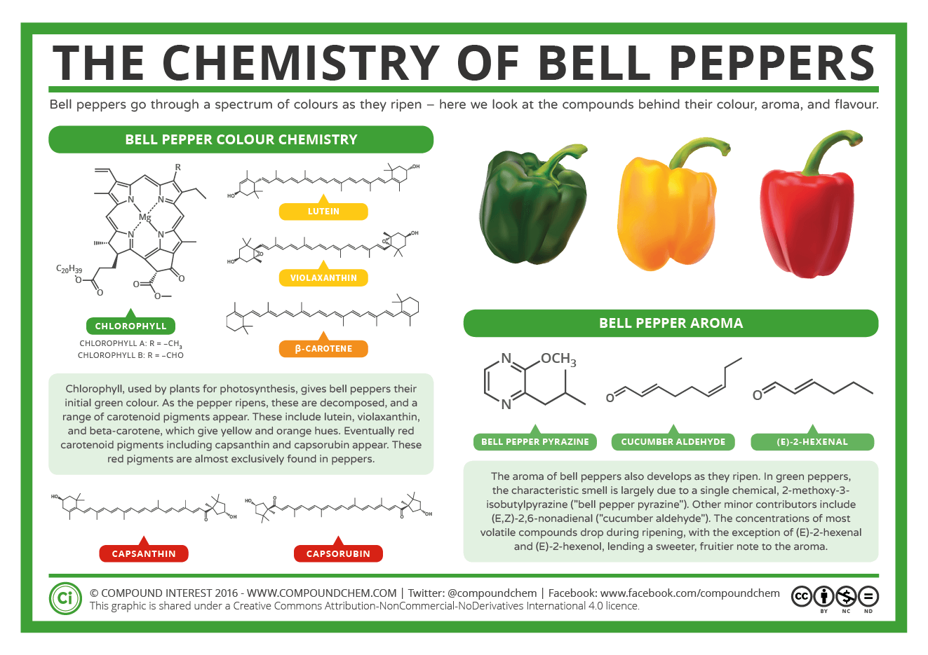 Herbs Chart The Chemistry Of Bell Peppers Colour And Aroma