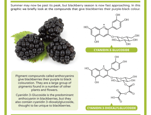 The Chemistry of Blackberry Colour