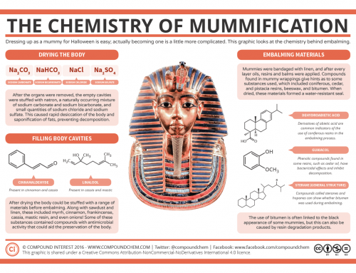 The Chemistry of Mummification