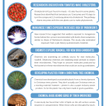 This Week in Chemistry – Searching Roadkill for Drugs, and Plastic from a Christmas Tree Chemical