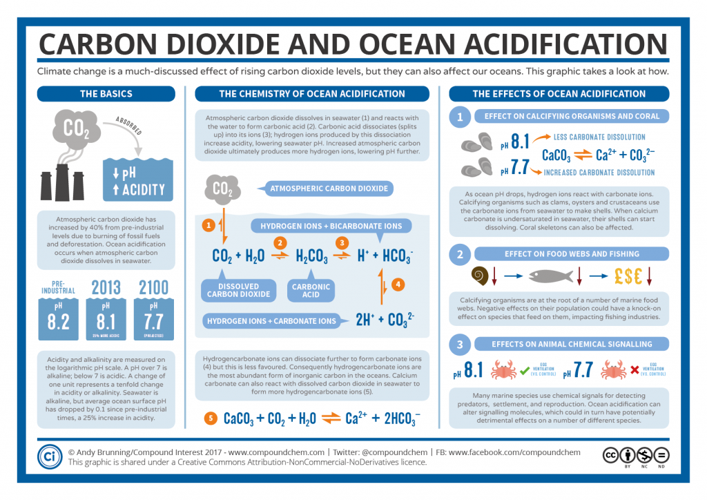 Carbon-Dioxide-and-Ocean-Acidification-1024x724.png
