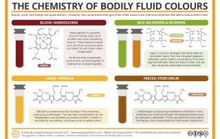 The Chemistry of Bodily Fluid Colours