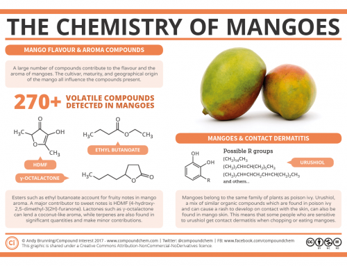 The Chemistry of Mangos: What Do They Have in Common with Poison Ivy?