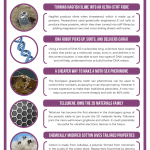 This Week in Chemistry – Stiff fibres from hagfish slime, and tailoring cotton's properties
