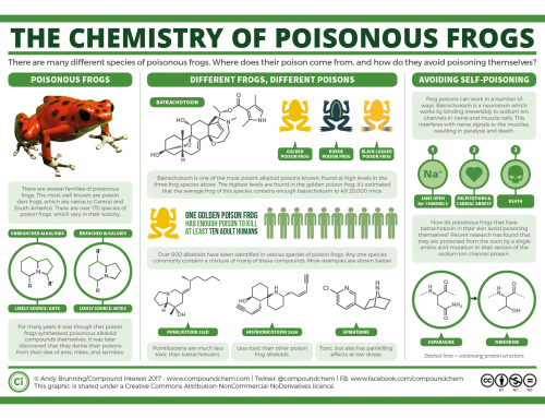 The chemistry of poisonous frogs, and how they avoid poisoning themselves
