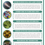 This Week in Chemistry – Heavy elements made in neutron star collision, and real-time observation of polymer chain growth