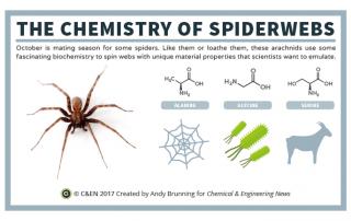 C&EN - The Chemistry of Spider Webs Preview