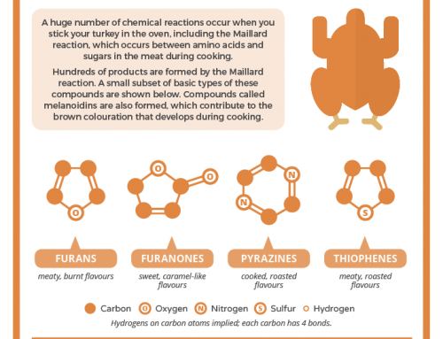 The flavour chemistry of your Thanksgiving turkey