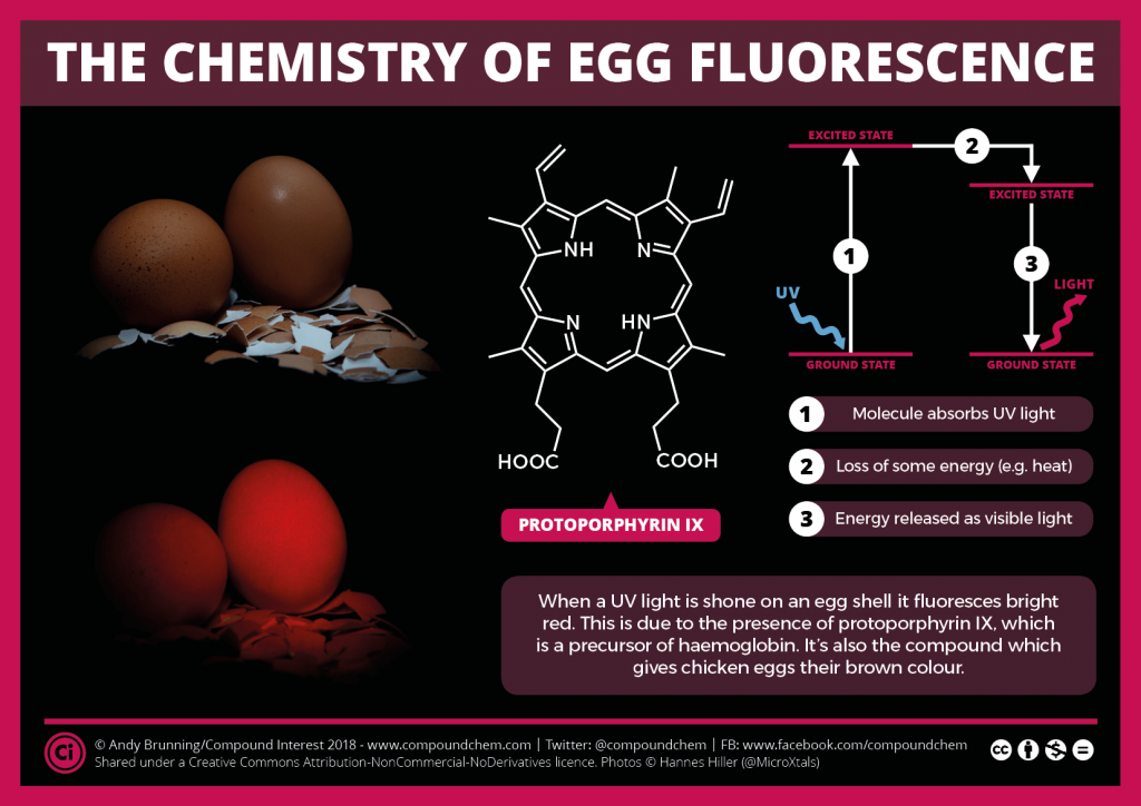 The Chemistry of Egg Fluorescence
