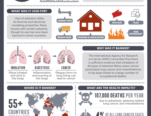 Chemical concerns: the dangers of asbestos