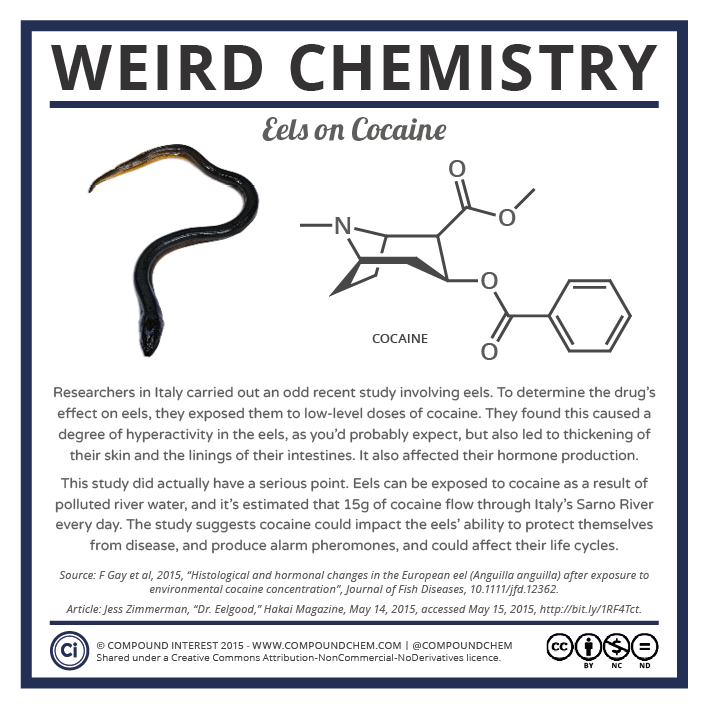 Weird Chemistry #16 - Eels on Cocaine.png