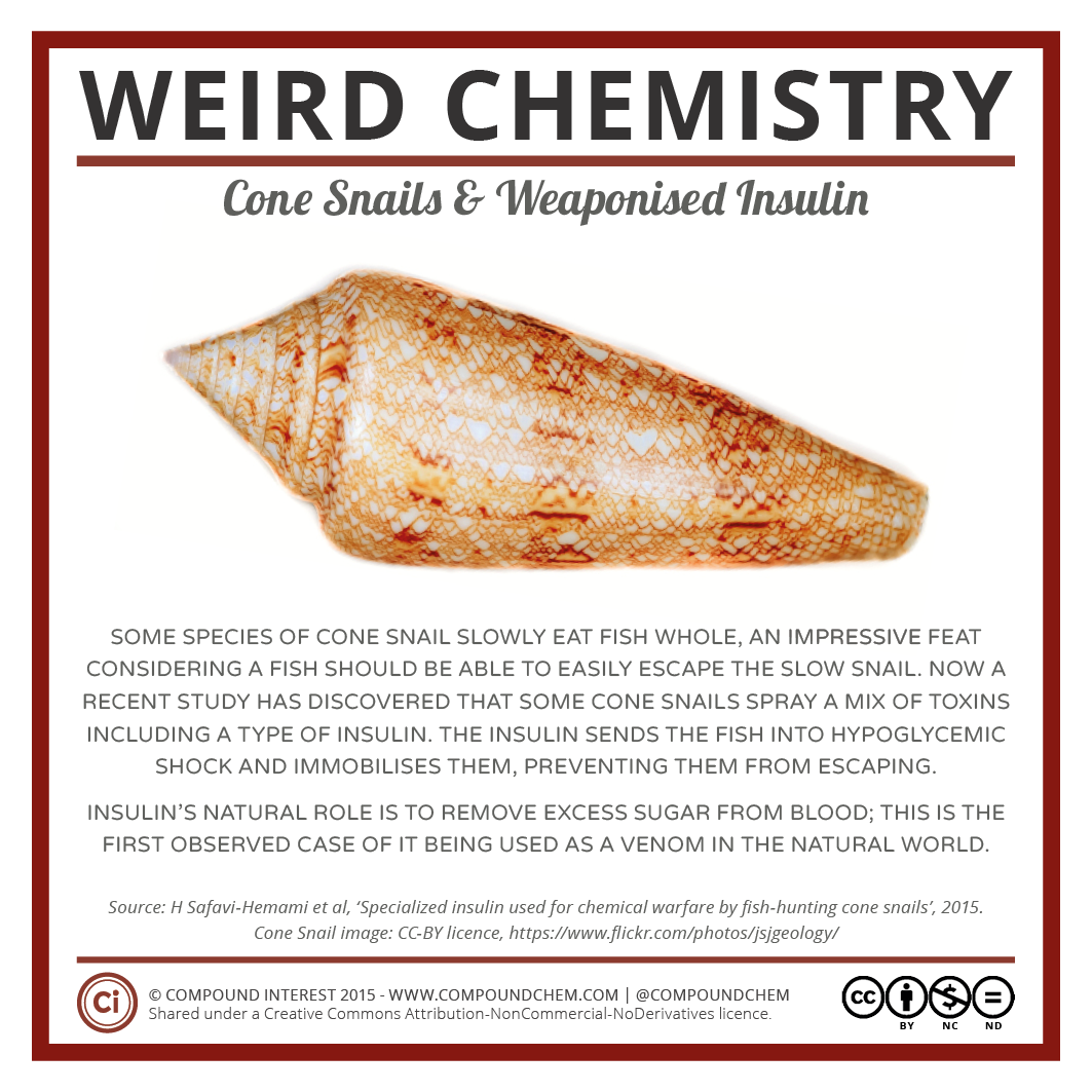 Weird Chemistry #2 - Cone Snails & Weaponised Insulin