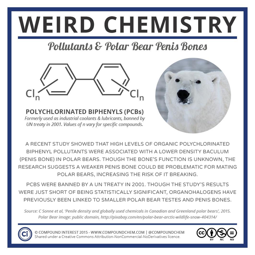 Weird Chemistry #3 - Pollutants & Polar Bear Penis Bones