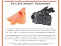 Weird Chemistry #1 - Salmon & Rare Earths