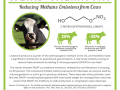 Weird Chemistry #23 – Reducing Methane Emissions from Cows