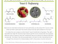 Weird Chemistry #7 - Yeast & Perfumes