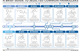 Brief Guide to Common Painkillers [2018]