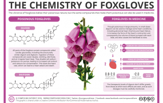 The Chemistry of Foxgloves