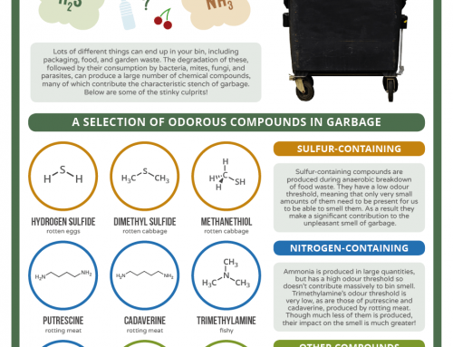 Talking Trash – The Chemistry Behind the Smell of Garbage