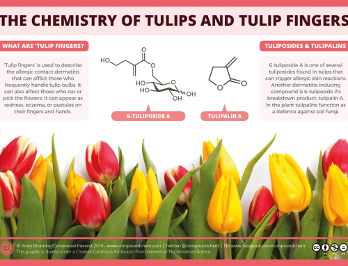 The chemistry of tulips and tulip fingers