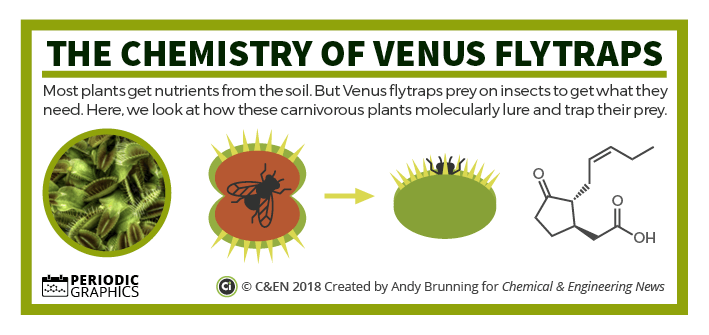 The chemistry of Venus flytraps – in C&EN