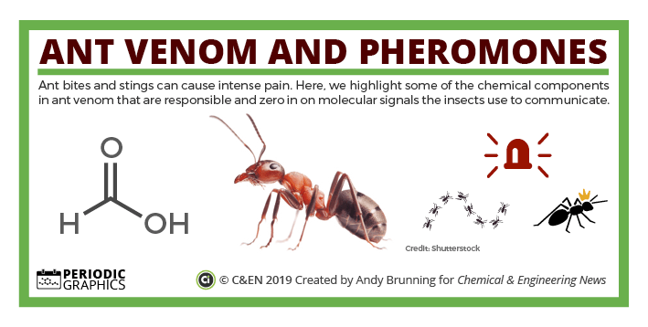 The chemistry of ant venom and pheromones – in C&EN