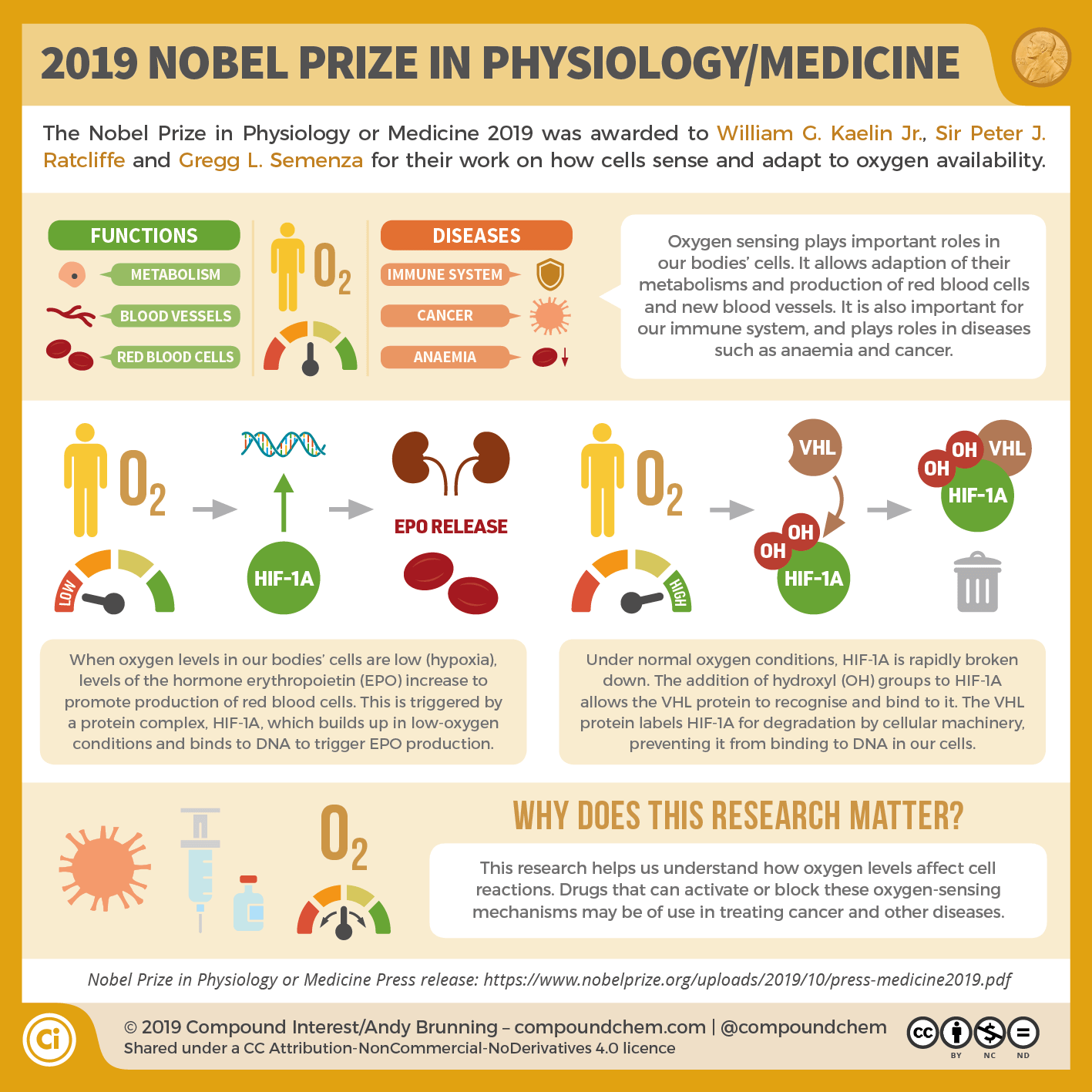 The 2019 Nobel Prize in Physiology/Medicine: How our cells sense and adapt to oxygen levels